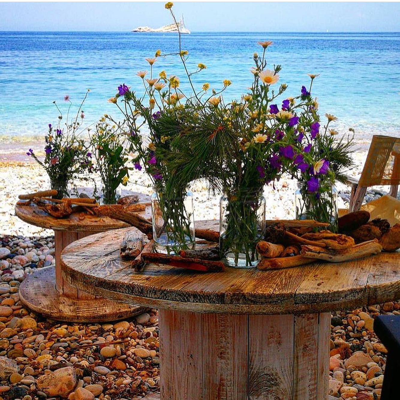 Wild Flowers…. i fiori campestri nella sostenibilità dell'Arcipelago Toscano